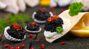Caviar, served in shells Stock Photos