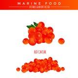 Caviar vermelho Alimento marinho Fotografia de Stock