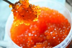 Caviar vermelho no frasco com imagens de stock