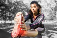 Caviglia evidenziata di allungamento della donna Immagine Stock