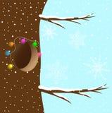 Cavité, décorée d'une guirlande sur un arbre Photos libres de droits