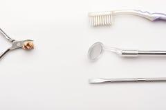 Cavité sur les dents extraites photographie stock