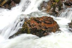 Cavitt Nebenfluss Lizenzfreie Stockfotos