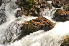 Cavitt Nebenfluss Stockfoto