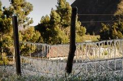 Cavo congelato Immagine Stock Libera da Diritti