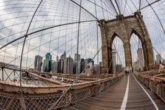 Cavo del ponte di Brooklin immagine stock