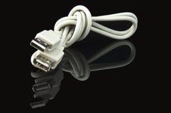 Cavo del USB sul nero Fotografie Stock