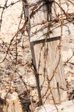 Cavo di Barb Fotografia Stock