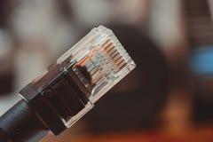 Cavo di Ethernet Fotografia Stock