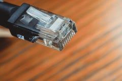 Cavo di Ethernet Fotografie Stock Libere da Diritti