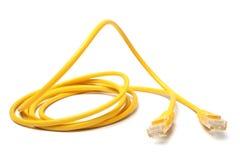 Cavo di Ethernet della rete con i connettori RJ45 Fotografie Stock Libere da Diritti