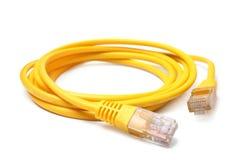 Cavo di Ethernet della rete con i connettori RJ45 Immagini Stock