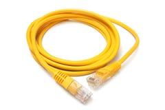 Cavo di Ethernet della rete con i connettori RJ45 Fotografia Stock Libera da Diritti