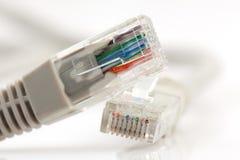 Cavo di Ethernet per un calcolatore Fotografia Stock Libera da Diritti