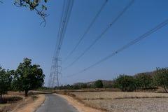 Cavo di griglia di potere sull'azienda agricola della risaia alla vista rurale Snap-on di fine della foresta un il giorno soleggi Immagine Stock