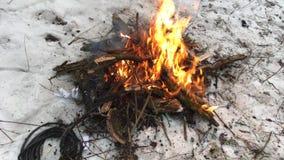 Cavo di infornamento in video di lasso di tempo del fuoco stock footage