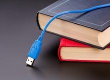 Cavo di USB Immagine Stock