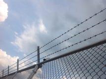 Cavo e cielo blu di Barb immagine stock libera da diritti