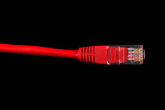 Cavo rosso della rete di calcolatore Immagini Stock