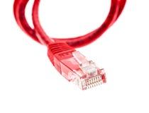 Cavo rosso di UTP della rete con il connettore RJ45 isolato su bianco Immagine Stock