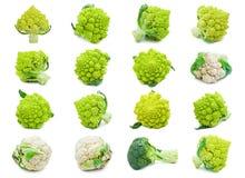 Cavolfiore e broccoli Immagini Stock Libere da Diritti