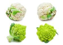 Cavolfiore e broccoli Fotografie Stock
