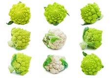 Cavolfiore e broccoli Immagini Stock