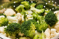 Cavolfiore e broccoli freschi Fotografia Stock