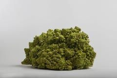 Cavolfiore verde Fotografia Stock Libera da Diritti