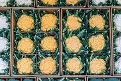 Cavolfiori sul deposito al mercato Immagine Stock Libera da Diritti