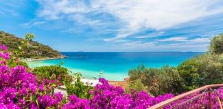 Cavoli plaża Elba wyspa, Tuscany, Włochy zdjęcia royalty free