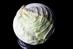 Cavolo bianco Fotografia Stock