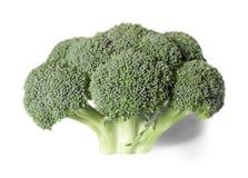 Cavolo dei broccoli Immagine Stock