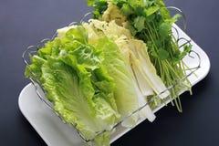 Cavolo del ¼ di Vegetablesï Immagini Stock Libere da Diritti