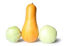 Cavolo dello zucchino Fotografie Stock Libere da Diritti