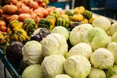 Cavolo fresco sul mercato degli agricoltori Prodotto dietetico e vegetariano Prodotti locali naturali sul mercato dell'azienda ag Fotografia Stock Libera da Diritti