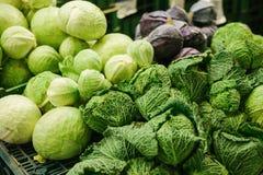Cavolo fresco sul mercato degli agricoltori Prodotto dietetico e vegetariano Prodotti locali naturali sul mercato dell'azienda ag Fotografia Stock
