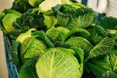 Cavolo fresco sul mercato degli agricoltori Prodotto dietetico e vegetariano Prodotti locali naturali sul mercato dell'azienda ag Fotografie Stock Libere da Diritti