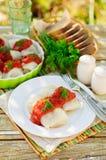Cavolo Rolls con salsa al pomodoro ed aneto Immagini Stock Libere da Diritti