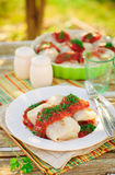 Cavolo Rolls con salsa al pomodoro ed aneto Fotografie Stock Libere da Diritti