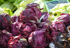 Cavolo rosso al farmer& x27; mercato di s Fotografia Stock