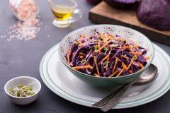 Cavolo rosso, carota, cipolla ed insalata dei germogli dei ravanelli Fotografia Stock Libera da Diritti