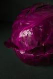 Cavolo rosso con le gocce di acqua Fotografia Stock Libera da Diritti