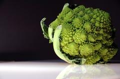 Cavolo verde Immagine Stock