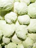 Cavolo verde fresco Fotografia Stock