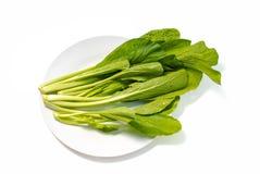 Cavolo verde su un fondo bianco Fotografia Stock