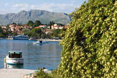 Cavtat in croatia Stock Images