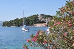 Cavtat hamn Dalmatia, Kroatien royaltyfria bilder