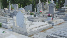 Cavtat tourist attraction is old town cemetery Royalty Free Stock Image