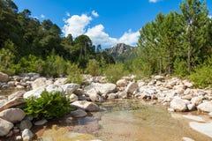 Cavu natural pool near Tagliu Rossu and Sainte Lucie in Corsica Stock Photography